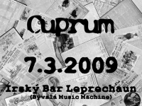 090307_irsky_bar